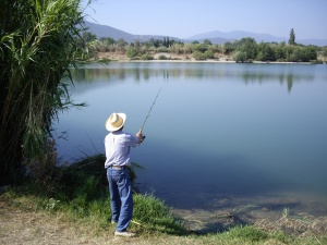 If you're having trouble catching a fish, check your bait.