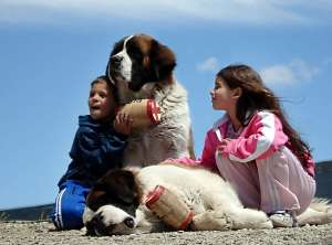 Little kids are better companions that St. Bernards because you can take them to restaurants. Of course, they'll probably never rescue you from an avalanche, though.