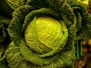 Some people eat cabbage when it isn't even St. Patrick's Day.